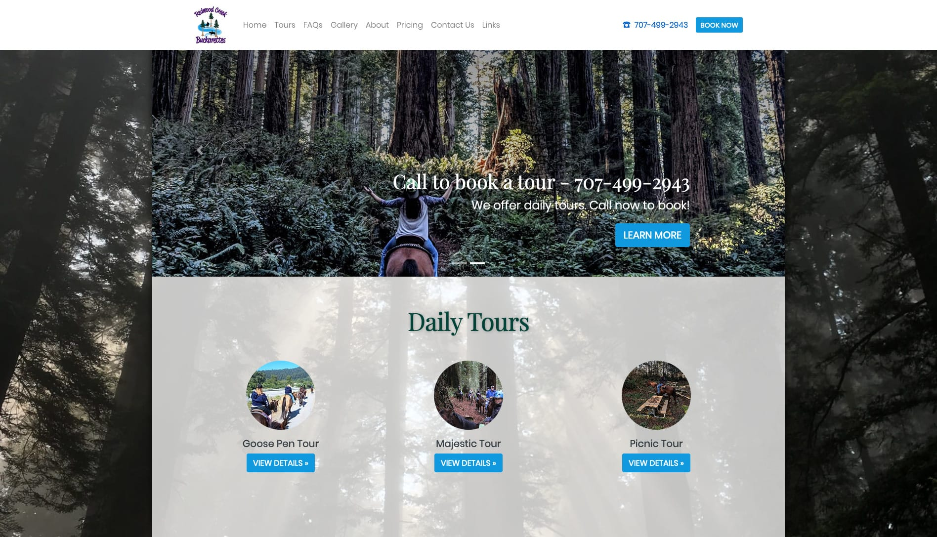 screenshot of static horse tour website